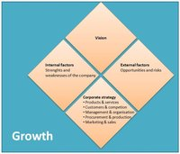 Corporate Strategy - Growth